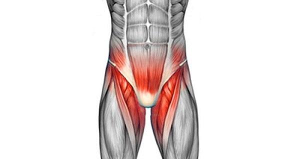 درمان درد کشاله ران پای چپ و راست با فیزیوتراپی و دارو و ورزش