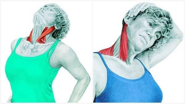 درمان سردرد و میگرنانعطاف عضلات جانبی گردن برای